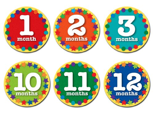 Sticky Bellies - Sticky Bellies Monthly Milestone Stickers - Nifty Neutral 1-12 Months