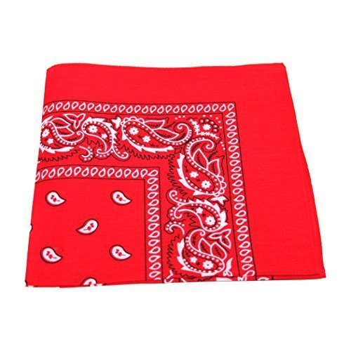 paisley-pattern-100-cotton-bandana-for-pet-dogs-red