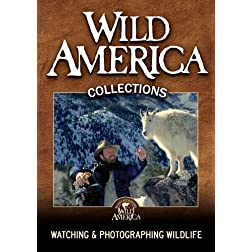 Watching &amp; Photographing Wildlife Collection