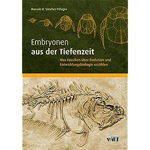 Embryonen aus der Tiefenzeit: Was Fossilien über Evolution und Entwicklungsbiologie erzählen