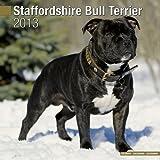 Staffordshire Bull Terrier W 2013
