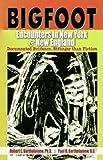 Bigfoot Encounters in New York