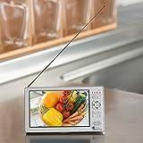 ニチワ電子(NICHIWA電子) 5インチ フルセグ 地デジテレビ搭載 FMワイドバンドラジオ CATV対応 内蔵バッテリー Aircat 500
