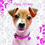 Pretty in Pink Jack Russell Birthday Card
