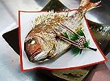 長谷川鮮魚店 山形県産 天然 真鯛 1尾300g前後 冷蔵 祝い飾りつき