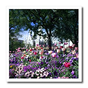 ht_94936_2 Danita Delimont - Utah - Temple Square, Wasatch Front, SALT LAKE CITY, UTAH - US45 SSM0148 - Scott T. Smith - Iron on Heat Transfers - 6x6 Iron on Heat Transfer for White Material