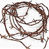 RUSTIC NYLON BARB WIRE WILD WEST DECORATION - 18 Feet - Halloween or western party decor!