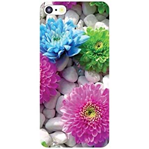 Apple iPhone 5C Eye Catchy Matte Finish Phone Cover