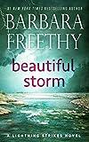 Beautiful Storm (Lightning Strikes Book 1) (English Edition)
