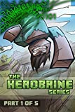 Minecraft: The Herobrine Series Part One of Five