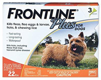 frontline-plus-small-orange-11-22lbs-3pk