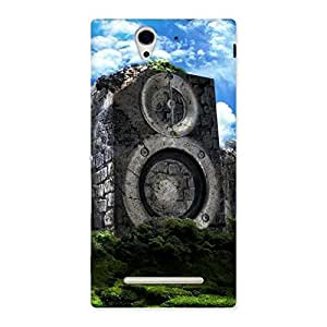 Ajay Enterprises WoSpeaker Of Rocks Back Case Cover for Sony Xperia C3
