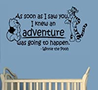 Winnie The Pooh-Adventure-Pooh and Tiger-Wall Sticker-Home Decor-Wall Decal-Wall Art-25