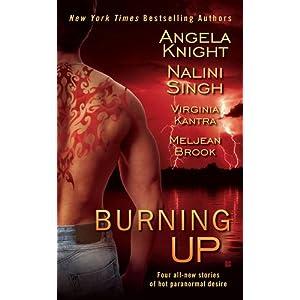 Burning Up (Berkley Sensation)