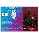ILLINOIS STATE FACTS postcard set of 20 identical postcards. Post cards with IL facts and state symbols. Made in USA.