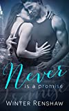 NEVER IS A PROMISE (Never Series Book 2) (English Edition)