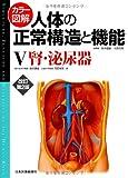 カラー図解 人体の正常構造と機能〈5〉腎・泌尿器