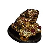 Money Frog, Chinese Money Frog, Three Legged Money Frog On Bed Of Gold Ingots