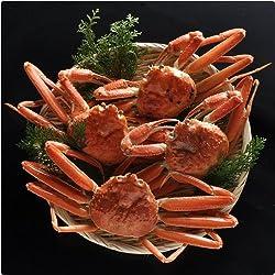 【送料無料】本物の目利きが選ぶ 鳥取網代の松葉ガニ 蟹尽くしセット 茹で 総重量1kg(3-4枚)