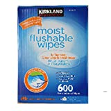 Kirkland Signature Moist Flushable Wipes 600 Pre-moistened Wipes for the Entire Family