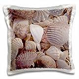 Danita Delimont - Beaches - USA, FL, Sanibel, Seashells Washed up on Beach - US45 RTI0045 - Rob Tilley - 16x16 inch Pillow Case (pc_94909_1)