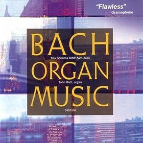 Sonata No. 3 in D Minor, BWV 527: II. Adagio e dolce