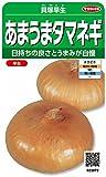 サカタのタネ 実咲野菜3972 貝塚早生 あまうまタマネギ