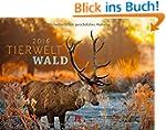 Tierwelt Wald 2016