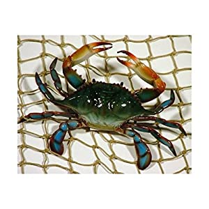 6 inch Maryland Blue Crab Beach Tiki Bar Wall Decor