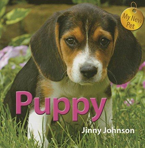 Puppy (My New Pet)