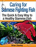 Caring for Siamese Fighting Fish: Betta Splendens
