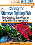 Caring for Siamese Fighting Fish: Bet...