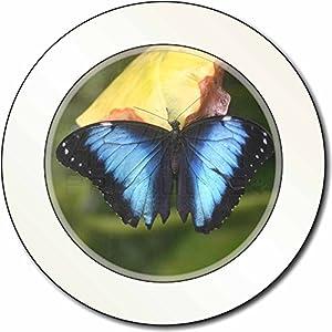Butterflies Car Tax Disc, Licence Holder
