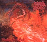 Blessed Are The Sick By Morbid Angel (2009-07-27)