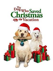 Dog Who Saved Christmas Vacation The