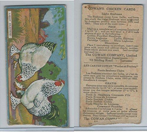 v12-cowan-chicken-cards-1924-light-brahmas