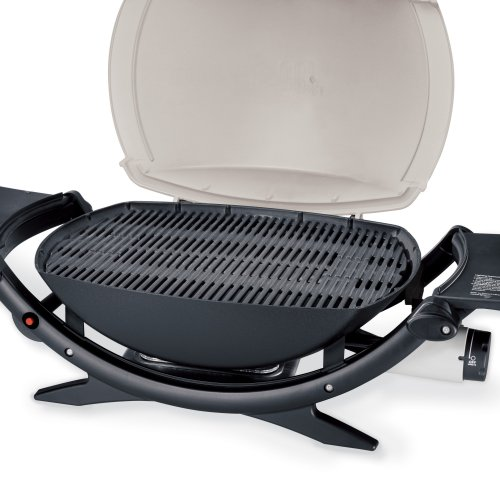 propane gas grill weber 396002 q 200 portable gas grill. Black Bedroom Furniture Sets. Home Design Ideas