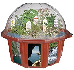 DuneCraft Dome Terrariums Exotic and Fun Plants From Around the World