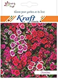 Dianthus Spring Beauty, 30 Seeds (Pack of 2) by Kraft Seeds