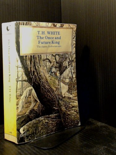 a synopsis of the moat from the once and future king by t h white