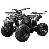 TaoTao Atv TForce 110cc Big Rugged Wheels (Black)