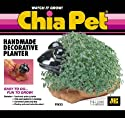 Chia Pet Handmade Decorative Planter- Frog