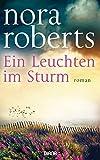 Image de Ein Leuchten im Sturm: Roman