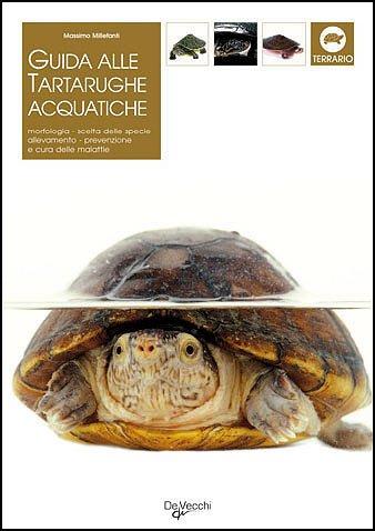 Guida alle tartarughe acquatiche