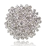 EVER FAITH Wedding Silver-Tone Flower Brooch Clear Austrian Crystal Bridesmaid Gift A02401-1