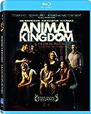 Animal Kingdom (La loi du plus fort