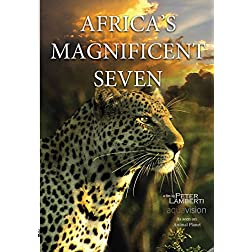 Africa's Magnificent Seven
