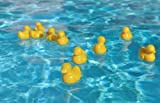 51VlZ5CR4RL. SL160  Baby Bath Toys: Plastic Ducky   12 Pieces Lead Free and Non toxic