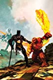 "Black Panther #28: Featuring the Marvel Zombies in ""Hell of a Mess"" (Civil War The Initiative - Marvel Comics)"