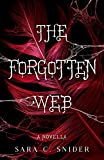 The Forgotten Web: A Novella